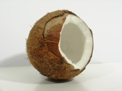 How can I reuse or recycle coconut shells?