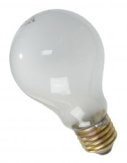 How can I reuse or recycle … dead light bulbs?