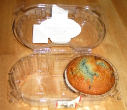 A blueberry muffin in a plastic box