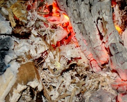 How can I reuse or recycle … lots of sawdust/wood shavings