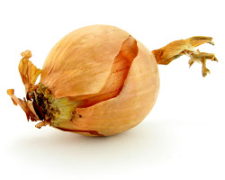 How can I reuse or recycle onion skins?