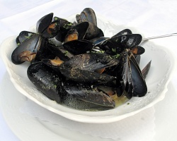 How can I reuse or recycle mussel shells?