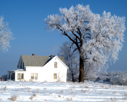 winter-house
